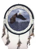 "24"" Eagle Mandala (4 Assortment)"