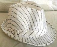 Fedora Stripe
