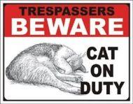 Cat on Duty